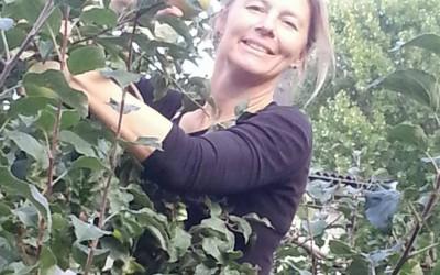 Höstaktiviteter i trädgården